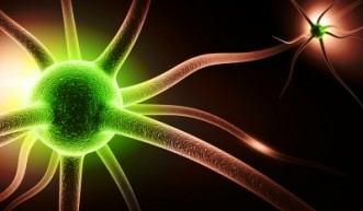 On Neuroplasticity – You Can Change Your Brain!